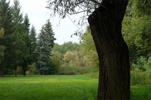 Park Niederschönhausen