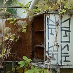 Verlassene Gärtnerei Berlin